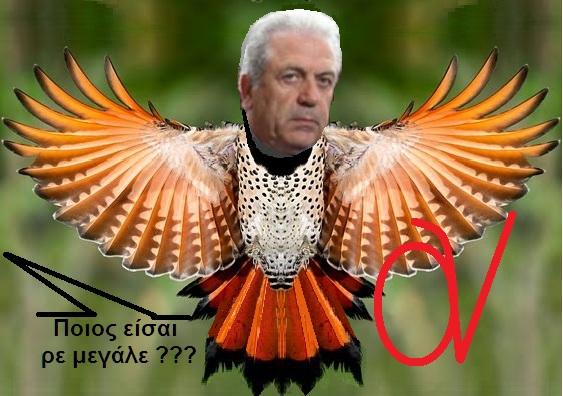 ΑΒΡΑΜΟΠΟΥΛΟΣ ΜΠΕΚΑΤΣΑ 1