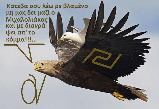 ΑΕΤΟΣ -ΓΛΑΡΟΣ -ΧΡΥΣΗ ΑΥΓΗ