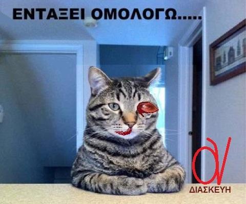 Μπουρζούκου -Γάτος